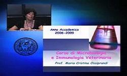 Medicina veterinaria - La Cellula Procariotica